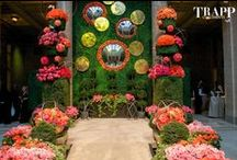 Events by Trapp and Company / From stunning weekly flower deliveries and holiday décor installations, to lush interior & exterior plantscapes, our team designs and maintains spaces in keeping with your company brand and vision. We also offer full-service corporate event design and generous gift giving programs year-round, for your convenience. Join the ranks of Kansas City's leading hotels, restaurants, small businesses and retail stores who choose the very best for clients and colleagues.