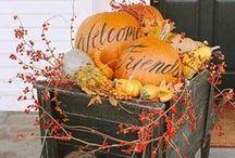 Autumn Entrances
