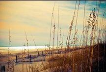 Destination: South Carolina