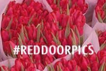 #RedDoorPics / For your red-spiration, tag #RedDoorPics and we'll share to our board. #RedDoorSpa  / by Red Door Spa