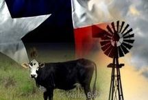 TEXAS!! State of My Heart ❤ / by Del Jeanne Mathews