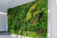 Green Real Estate 101 / Green Real Estate