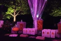 Lincoln Park Zoo Ball 2014 / Thanks Lincoln Park Zoo Ball for letting us share our #HandcraftedHappiness during all the #MonkeyBusiness Friday night!