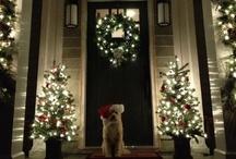 Christmas / by Kylie Goodman