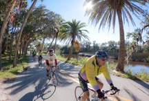 Cycling in Winter Garden, Florida / If you would like to spend a week of great cycling in Florida during the cold Canadian winter for an affordable price, book our trip!