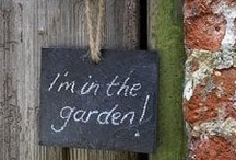 Gardening  / by Roberta Peterson