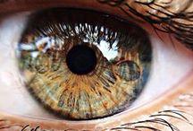 Seus olhos no retrato...