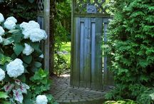Gardens & Gardening / by Charlotte Hamrick