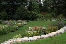 The North Garden / by Blithewold Mansion, Gardens & Arboretum