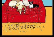 FURNITURE / Stuff to put in house / by Lou Ann Kissock