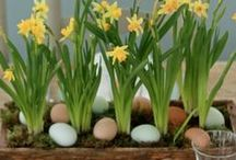 EASTER: Decor and Table Settings / Easter decor ideas and table settings that will inspire you this spring!