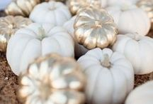 Pumpkin and Fall decorating ideas / Clever and cute ways to decorate pumpkins and ideas on how to decorate for Fall and Autumn.