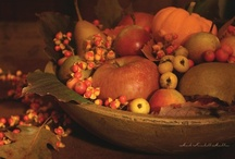 A Primitive Autumn / by Mary Ballester