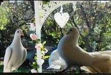The  Dove Garden / This is my Garden, a place for my Doves to flutter as they please, to sit in the tree or the grass, a place to be Wild and free, they have their loft to sleep in at night, but through the day they can do what they like.