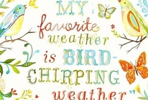 Feathered Friends / Birds and birdy things. I'd like to bird watch someday! / by Rebecca Leftwich
