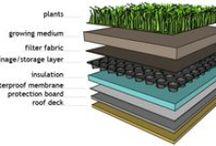 toit vegetal