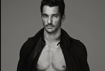 David Gandy / Possibly the most gorgeous man in the world. Who knew an English woman, and a Pakistani Man would create this unforgettable being. Give it up for the man that no man can compete with. Mr. David Gandy. / by Carlie Allison