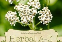 Herbs We Love / Natural Herbs and Their Health Benefits