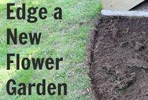 Gardening / Gardening: Turning that black thumb green!