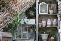 My Garden / by Jeanne Minson