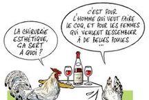 Bu et Approuvé par La Vieille Ferme / L'actualité vu par le Coq et la Poule de la Vieille Ferme.
