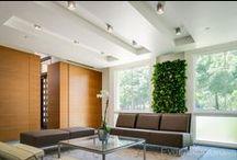 Indoor Living Walls / Living walls and vertical gardens