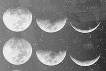 the moon / by Wild Folk Studio