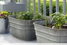 Container Gardening / container gardening tips, hacks and tutorials. Includes types of container gardens, how to best keep them alive and vegetable gardening in containers.
