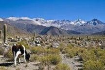 Argentinië / Argentinië een prachtig vakantieland. Ik hoop dat u ook enthousiast zult worden, na het lezen van mijn verhalen
