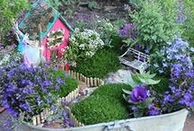 For My Garden / by Bonnie Patton