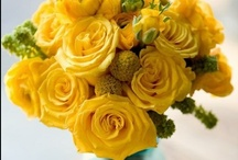 Color inspiration - Yellow