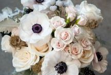 Wedding Flowers / Flowers I like for my wedding / by Joanna Thorp