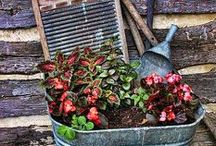 Rustic Designs / Rustic design ideas for indoors and outdoors.