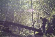 Nature - Explorer / De belles images qui envoient vers des articles d'explorateurs comme toi et moi, pour te donner envie toi aussi, d'aller explorer la nature autour de chez toi.