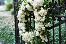Wedding Inspiration - Misc Floral and Inspiration