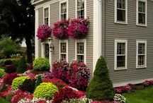 Lovely Lawn and Garden