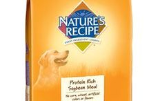 Dog | Special Needs Recipes / by Nature's Recipe