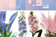 Color, Print, Style Trends / Color Trends, Fashion, Prints, Style, Home Decor, Paint Colors