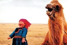 Laughter! / by Nicole Harrison