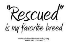 Animal Welfare/Rescue/Shelter Animals / by Nicole Harrison