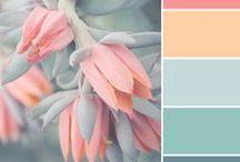Color Scheming / Pretty color schemes  / by Danielle Cornish