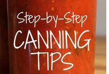 Canning & Preserving 101 / by Lisa Duran