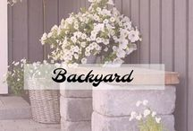 Backyard / Plans for the backyard