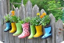 Home: Gardening Galore  / by Jandi Eline