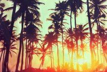 Summer lovin / by isabel kaiser