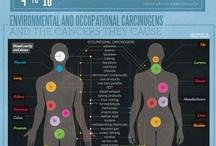 Infographics Health & Fitness