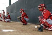 #MLB calienta motores en 2015 / Los diferentes equipos de las #GrandesLigas comenzaron a recibir a sus peloteros para el inicio de los entrenamientos primaverales, que se extenderán hasta finales de marzo. En esta época es común ver a jóvenes promesas y a súper estrellas en los campos de beisbol / by Lider En Deportes