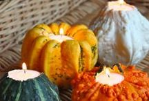 Fall Decorating! / Autumn leaves, pumpkins and turkeys are all the best time to decorate! Follow this board for great tips to excel at decorating this fall! / by BillCutterz