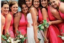 Beach Weddings / Our favorite tropical island wedding ideas - Sirenia Style! http://www.annamariaislandhomerental.com https://www.facebook.com/AnnaMariaIslandBeachLife Twitter: https://twitter.com/AMIHomeRental / by Anna Maria Island Beach Life