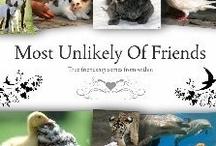 Unusual animal friendship / by Cloud .